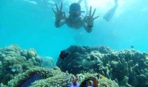 Snorkeling in Gili Labak